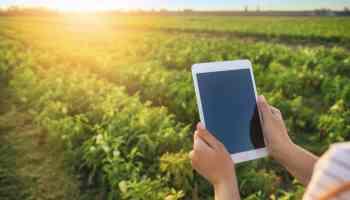 Agricultores de Carolina del Norte pueden solicitar ayuda financiera en línea