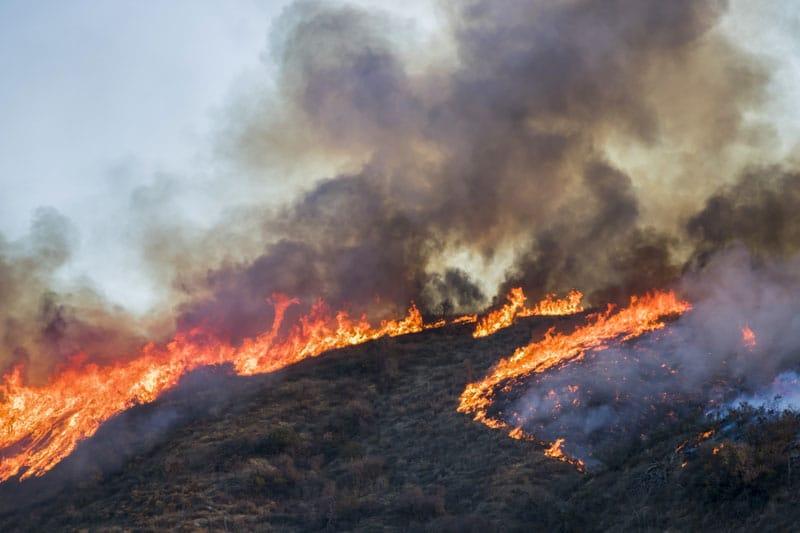 CDC ofrecen prevenciones frente al humo de incendios forestales
