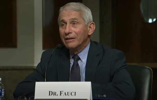"""""""No estás escuchando"""", le dice Fauci al senador Rand Paul durante una audiencia en el Senado sobre el coronavirus"""