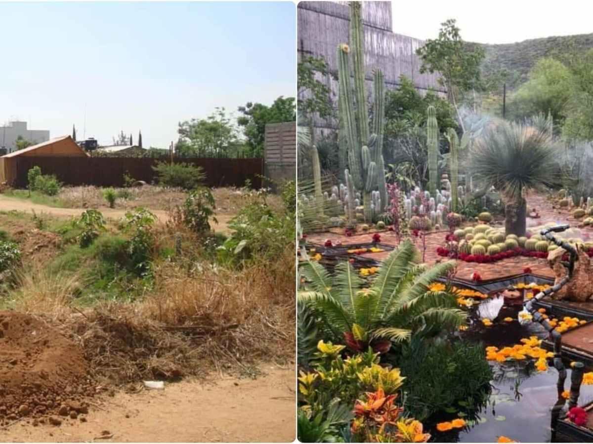 Transforman basurero en un hermoso jardín