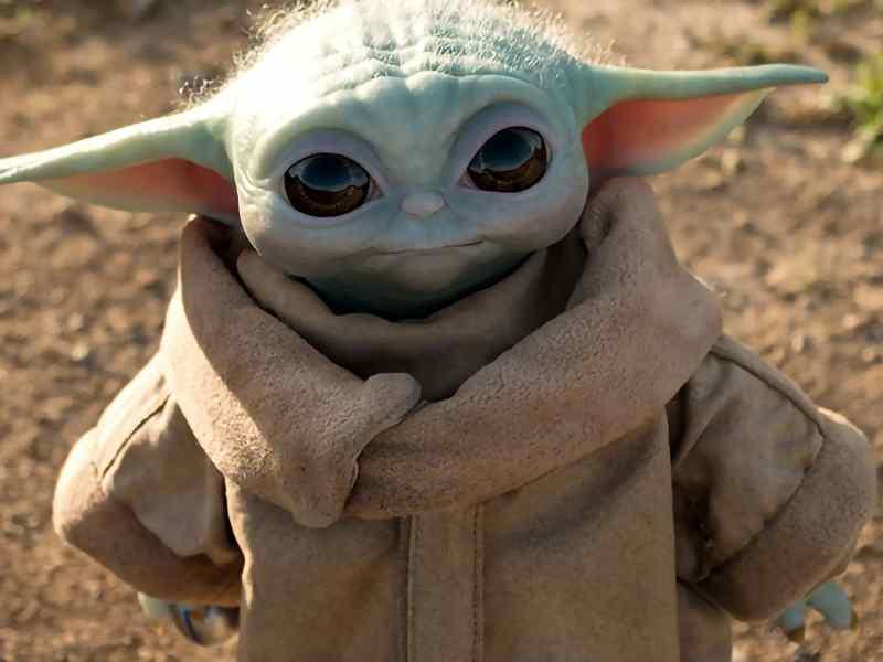 The Child Mandalorian Yoda