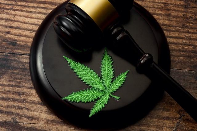 ¿Qué países han legalizado la marihuana?