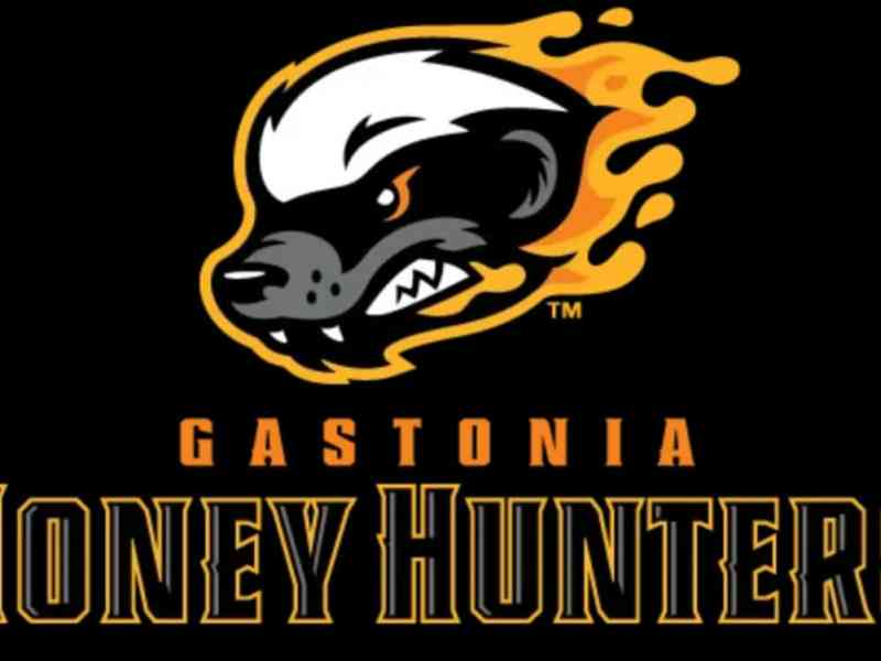 Gastonia Honey Hunters