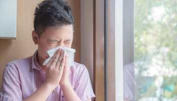 Alergias más comunes en Carolina del Norte: ácaros, ¿cuándo ocurre? ¿qué hacer?