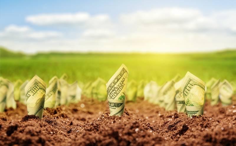 5-rituales-para-atraer-el-dinero-abundancia-prosperidad