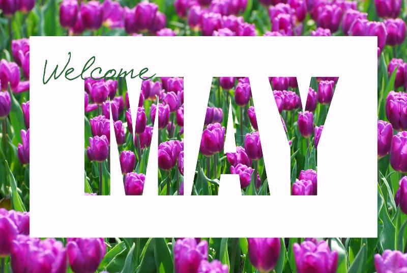 bienvenido-mayo-frases-y-refranes-famosos-para-dedicar