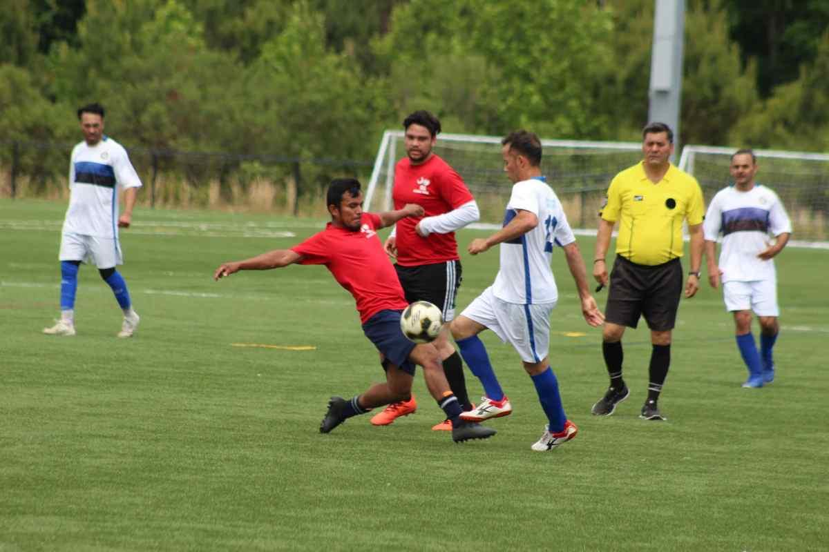 Halcones sumó tres puntos importantes en el Torneo Dominical