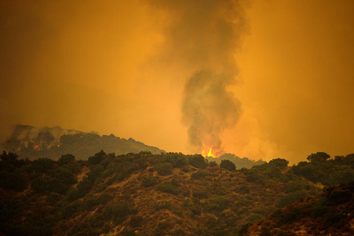 Bomberos combaten incendio forestal en Chico