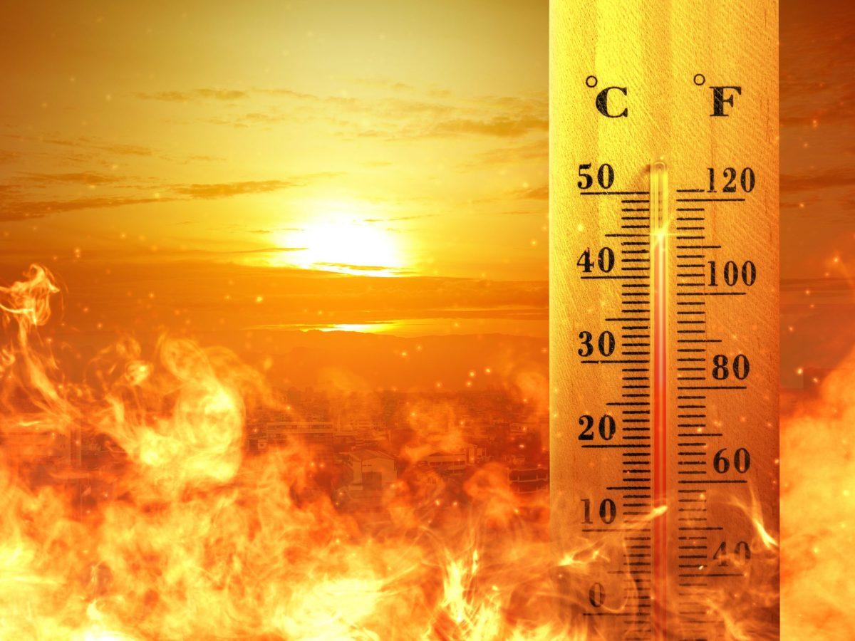 alerta-flex-en-california-por-ola-de-calor-que-significa