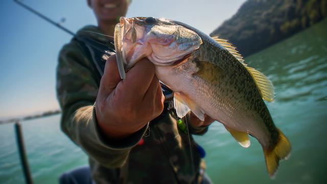 El día de pesca gratis en Carolina del Norte
