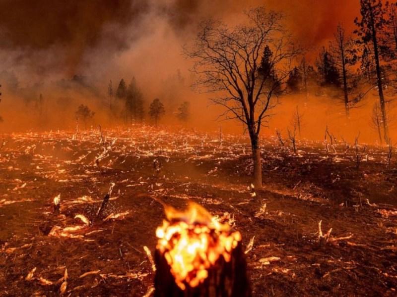 Oregon-ayuda-sofocar-incendios
