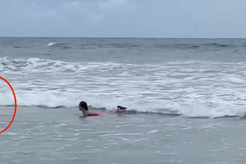 niña tiburón myrtle beach