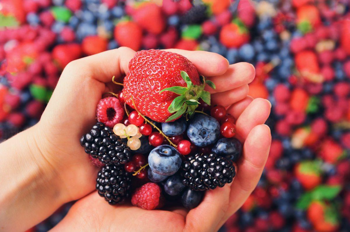Las bayas (fresas, cerezas, moras, frambuesas, arándanos) tienen propiedades antialérgicas, anticancerosas, anti-inflamatorias y analgésica. © Adobe Stock