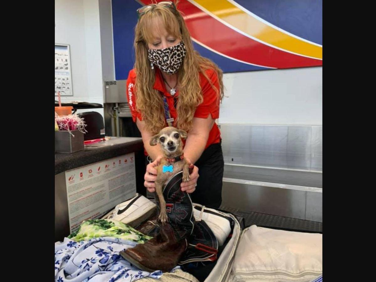 pareja Texas aeropuerto chihuahua