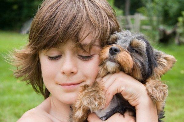 aprender-de-los-perros-13