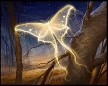 fc593217b14ffba63f65143ac9150371--butterfly-kisses-butterfly-art