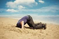 cant-find-your-life-purpose-with-your-head-in-the-sand