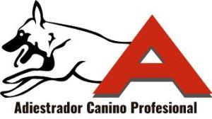 ackan.es_adiestrador_canino_profesional_alicante