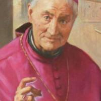 Biografía de San Giovanni Antonio Farina, obispo