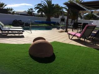 villa palmera sun loungers