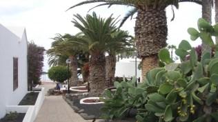 Amapola Villa Gardens