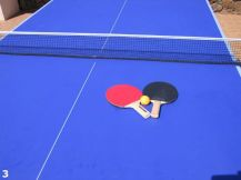 Bellisima Table Tennis