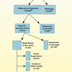 California Court System Diagram Three Way Wiring Multiple Lights S Criminal Justice A Primer 3614 Png