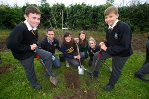 100 Orchards To Be Planted To Mark Ireland's Centenary Celebrations