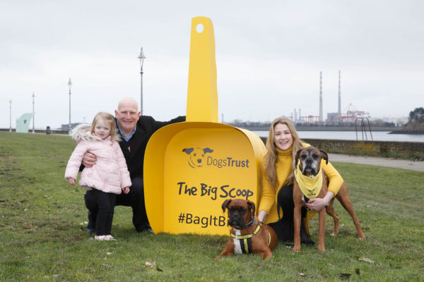 Dogs Trust Launches Nationwide Campaign 'The Big Scoop'