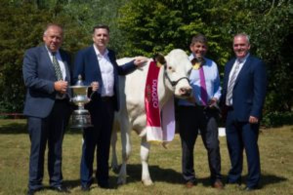 Top All-Ireland Champion Dairy Cow Contest Calling For Tipperary Entries