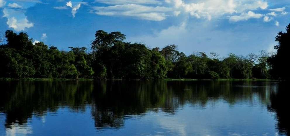 Países de Sudamérica analizaron situación de la Amazonía