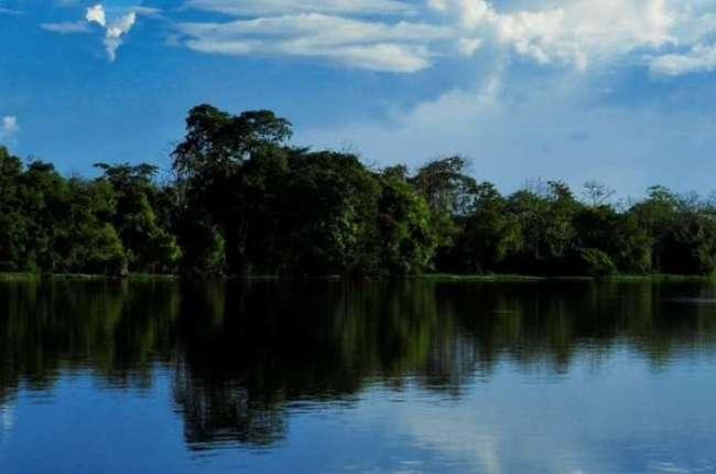 paises-de-sudamerica-analizaron-situacion-de-la-amazonia