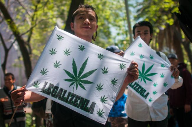 el-partido-de-lopez-obrador-presenta-un-proyecto-para-legalizar-la-marihuana