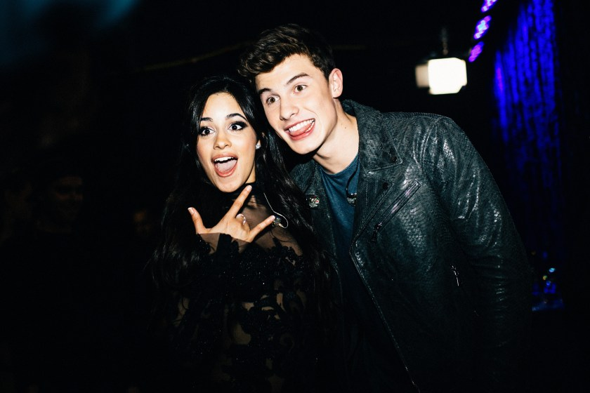 Camila Cabello and Shawn Mendes boast to their adorable perrijos during the quarantine