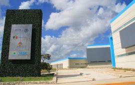 Borge y un negocio de 130 MDP con la Federación