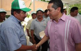 Más 200 familias rurales del sur mejoran su economía con la producción de sorgo: Carlos Joaquín