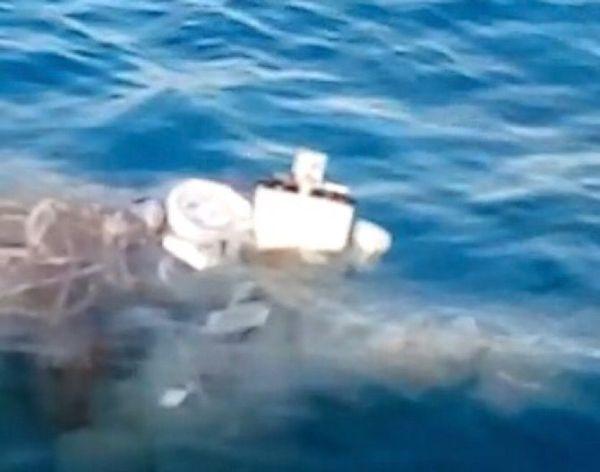 Encuentran artefacto sospechoso en Cozumel; no es explosivo, afirma SSP