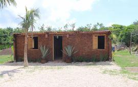 Proponen hacer viviendas rurales con sargazo