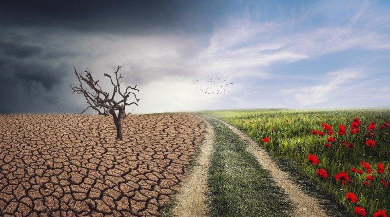 Cambio climático, el principal problema de la humanidad; Especialista