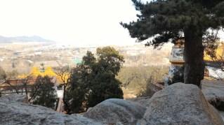 Scenic top