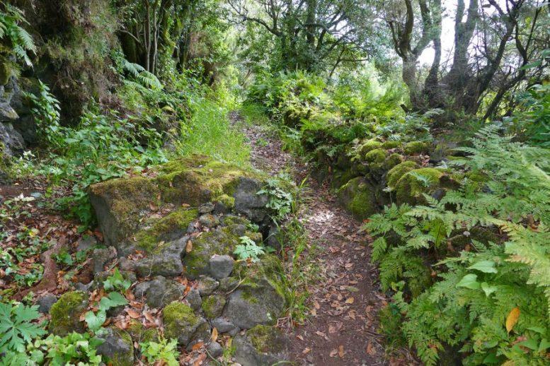 Wanderweg - La Palma Tourismus