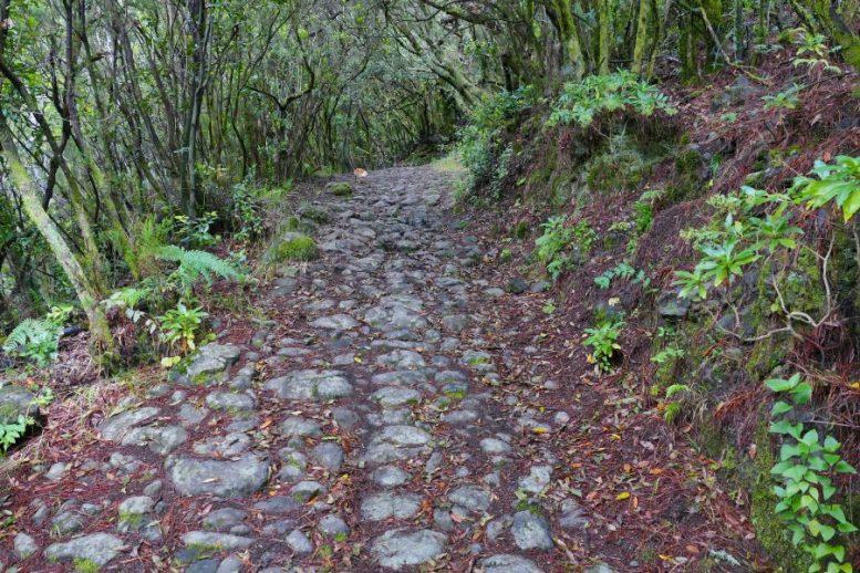 Gepflasterter Weg - Grotten