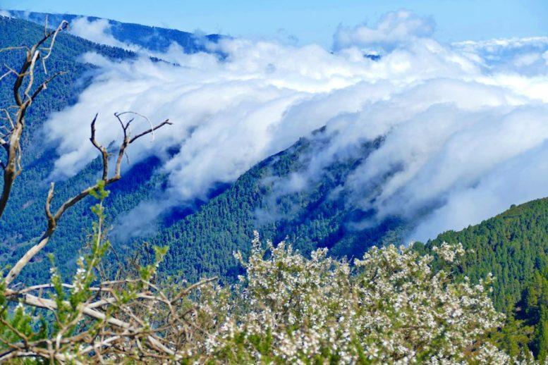 Wolkenfall - Birigoyo
