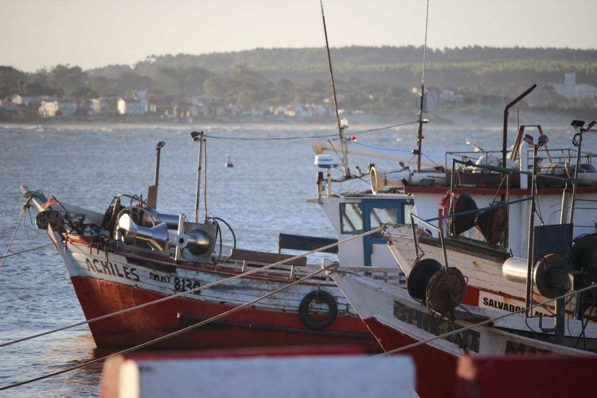 Crítica situación de la pesca: El costo de un amarre en el puerto de La Paloma supera al de una vivienda