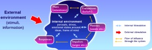 Prime_theory_diagram
