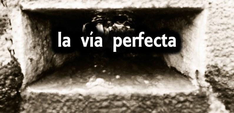 RODAJE DE LA VÍA PERFECTA