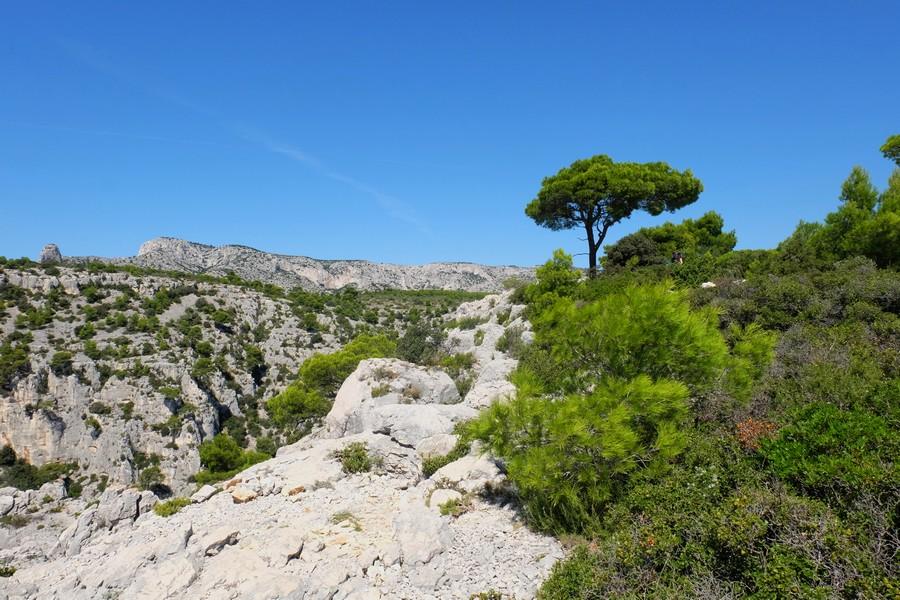 Randonnée dans les Calanques de Cassis