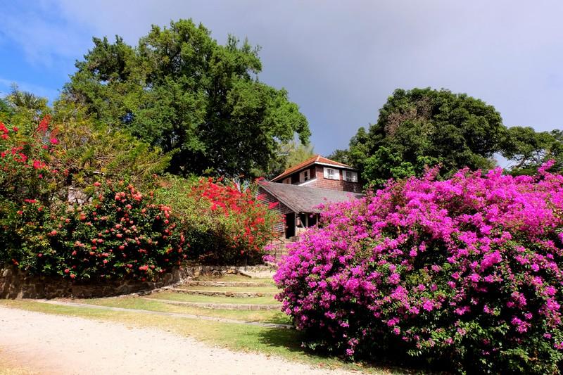 L'Habitation Clément en Martinique