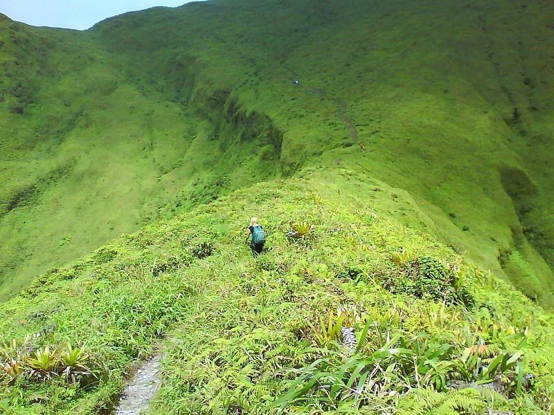 Randonnée sur la Montagne Pelée