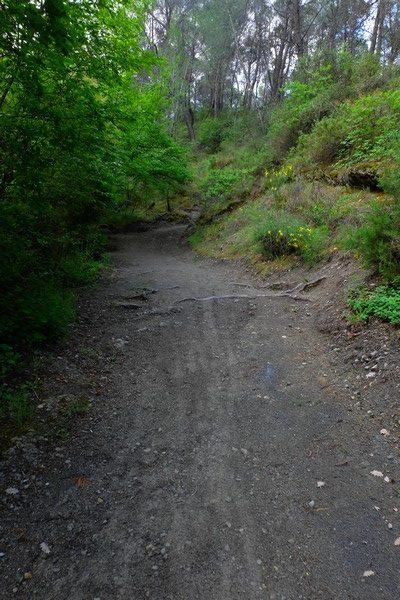 Sentier pédestre à Peillon